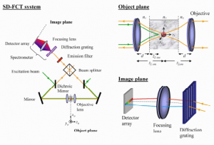 Image formation in fluorescence coherence-gated imaging through scattering media