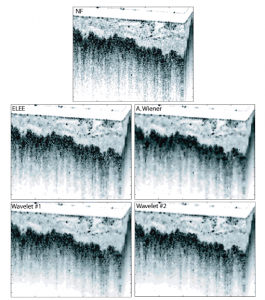 speckle reduction in optical coherence tomography images using digital filtering