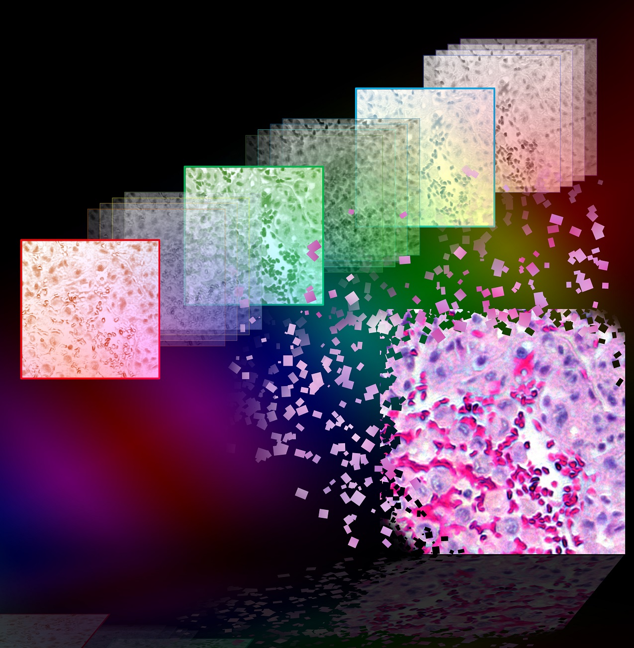 Color-Imaging-Holography