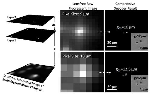 Lensfree wide-field fluorescent imaging on a chip using compressive decoding of sparse objects