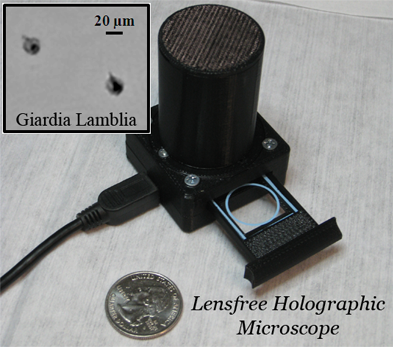 Detection of Waterborne Parasites using Field-portable and Cost-effective Lensfree Microscopy