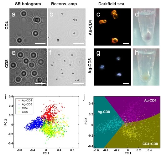 On-Chip_Cytometry_Using_Plasmonic_Nanoparticles_2013